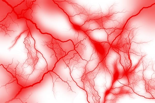 毛細血管が、美容、健康、老化、全てを左右する!毛細血管を増やしましょう!